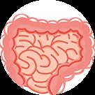 大腸ポリープ大腸がん